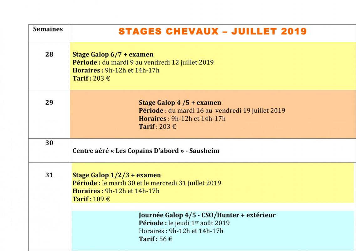 Planning des stages chevaux e te 2019
